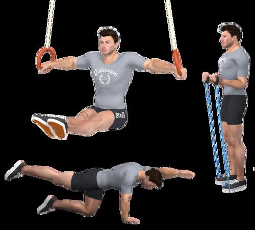 Spiernorm - Beweegmodel - Fitness Als Medicijn